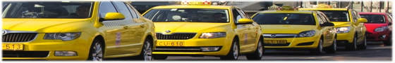 Official, licenced taxi